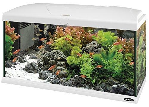 ferplast capri 80 aquarium 100 l blanc 1 - Aquarium 100 litres