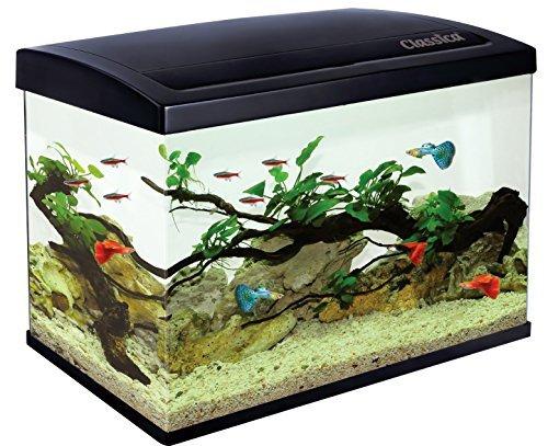 classica eco 45pour aquarium aquarium de 45l kit dclairage led filtre 1 - Les 5 meilleurs chauffage aquarium