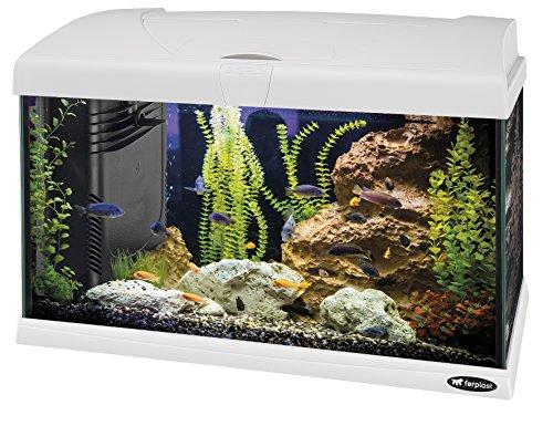 ferplast capri 50 aquarium 40 l blanc 1 - Aquarium 40 litres, les 5 meilleurs