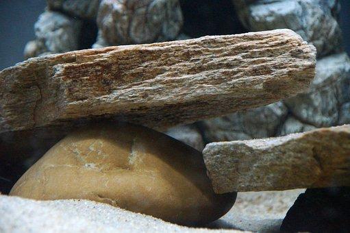 pierres, jaune gneiss, aquarium