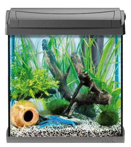 tetra aquarium aquaart anthracite 30 l 1 1 - Aquarium 30 litres, les 5 meilleurs