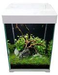 Aquarium avec couvercle, tube LED et filtre intérieur. Volume : 20 l. Dimensions : 240 x 250 x 320 mm.