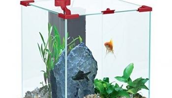 Les 5 meilleurs Aquarium 50 litres