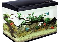 Les 5 meilleurs chauffage aquarium