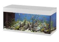 Aquarium 240 litres, les 5 meilleurs