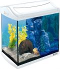 Tetra 244894 AquaArt Aquarium en kit Complet avec LED Blanc 30 l